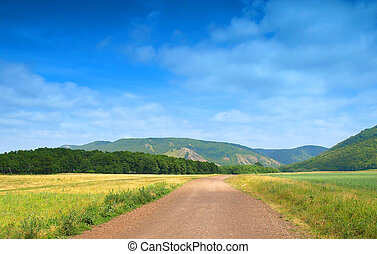 Road in the gorge. Summer landscape.
