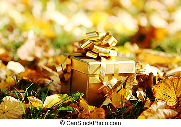 autumn gift - golden gift in autumn forest