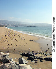 Beach of Valparaiso, Chile