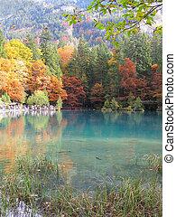 Trouty lake Blausee, Switzerland
