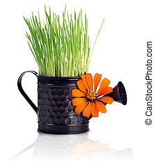 Watering can with grass & flower