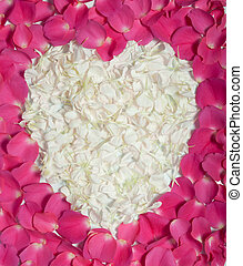 Cream heart in pink rose petals