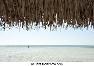 tetto, oceano, capanna,  tiki, sotto, vista