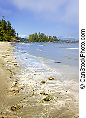Coast of Pacific ocean, Vancouver Island, Canada - Long...