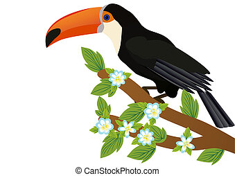 Toucan on a branch with flowers