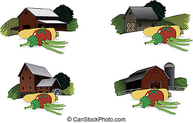 Old Barn Scenes with Vegetables - A collection of four...