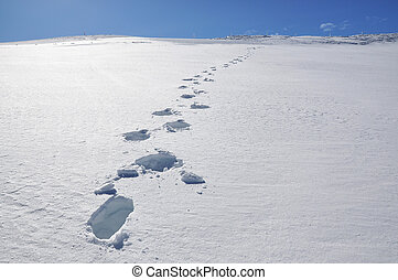 Footsteps on the snow Pizol, Swiss Alps