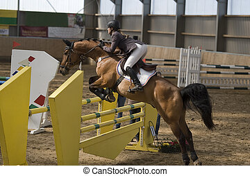 riding - beautiful jumper