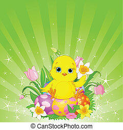 Beautiful Easter chick background - Radial Easter background...
