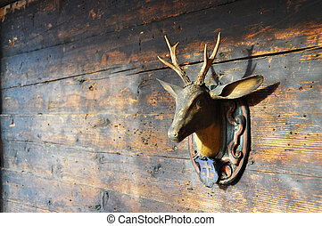 Trophy on a wooden wall