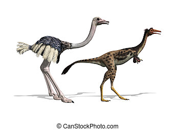 Ostrich and Mononykus Dinosaur Comparision - A 3D render...