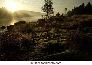 Lake in Deep Forest - Sunset over Mountain Lake in Deep...
