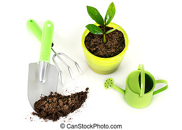 Plant with garden tools. - Plant with garden tools isolated...