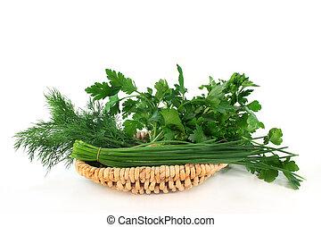 culinario, hierbas