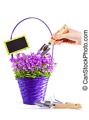 Care of basket with flowers