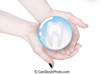 hands holding tooth in glass sphere, dentistry