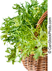 Escarole endive. - Curly escarole endive leaves on a basket.