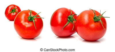 Juicy fresh tomatoes