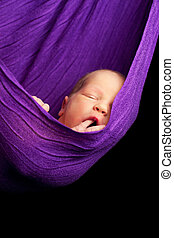 Newborn baby Sleeping  in a purple Sling