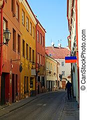 Narrow Street In Vilnius