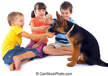 Kids playing with dog - Three kids sit on the floor,...