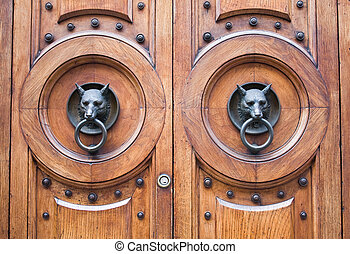 door with a wolf head