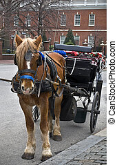 Horse and Carriage Philadelphia - A horse and carriage in...