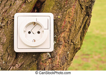 Bio Energy - An electric plug fixed on a tree