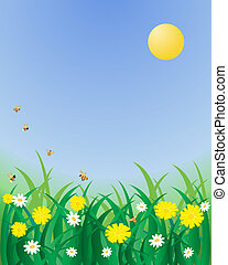 wild flowers - an illustration of dandelions and daisies in...