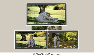 Montage of mature couples relaxing in the park and on...