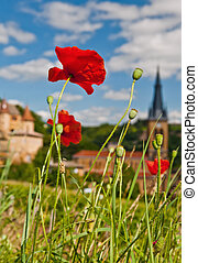 Poppies in Beaujolais, France