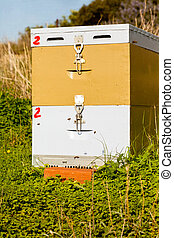 Beehive in the Field