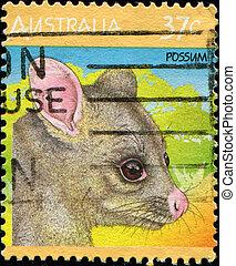 possum - AUSTRALIA - CIRCA 1987: A stamp printed in...