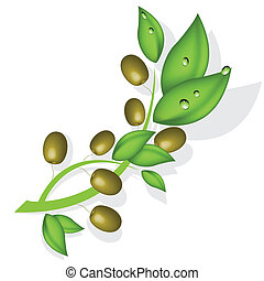 branch of the olive - illustration, branch with olive on...