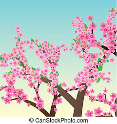 Spring or summer background with cherry blossom, sakura trees, vector illustration