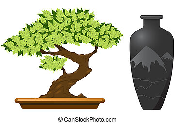 Bonsai tree - Japanese bonsai tree and vase isolated on the...