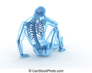 sitting male with visible bones - 3d rendered illustration...