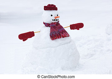 Snowman standing on the snow field