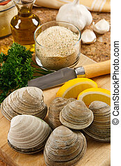 Fresh Littleneck Clams - Littleneck clams arranged with...