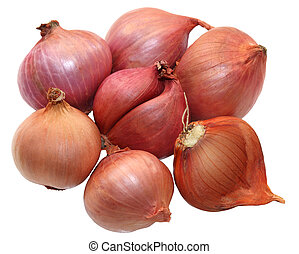 Shallot - Group of small red shallot onions isolated on...