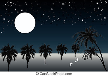 Palm trees and full moon night - Beautiful view of full moon...