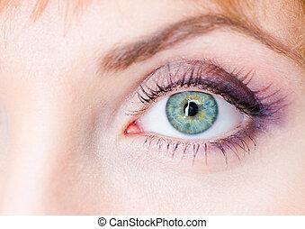 female eye - closeup view of a beautiful female eye with...
