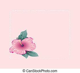 Romantic hibiscus frame