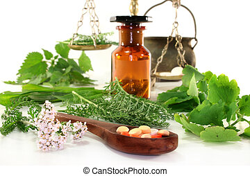 Naturopathy - fresh medicinal herbs and spices on a white...