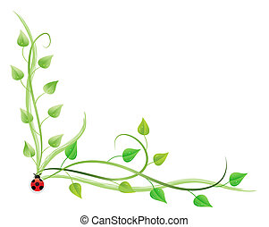 Pothos and ladybug - Raster illustration of pothos on vines...
