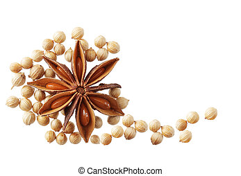 Anise and Cilantro seeds - Dried anise flower and cilantro...