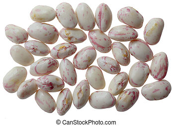 Cranberry Beans out the pod - Group of cranberry beans...