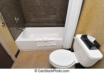 Toilet and bathtub - Clean and luxurious toilet and bathtub...