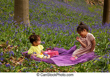 children's picknick in field of bleubells in the woods
