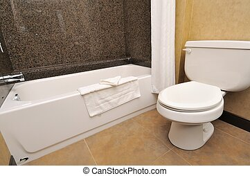 Closeup of toilet and tub
